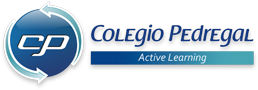 cropped-logo_nuevo_pedregal1.png
